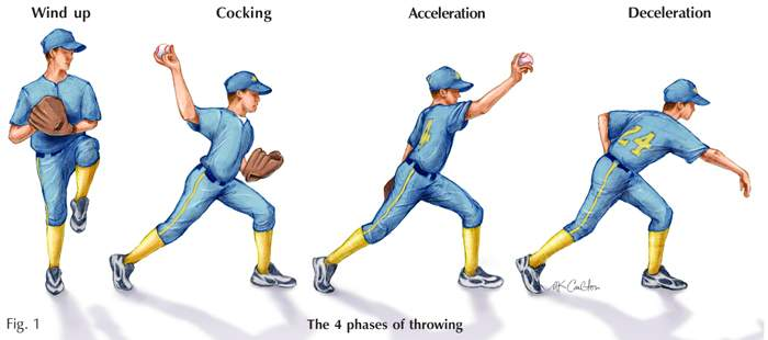 Phases of throwing